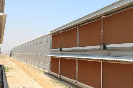 Double Floor Steel Structure Poultry