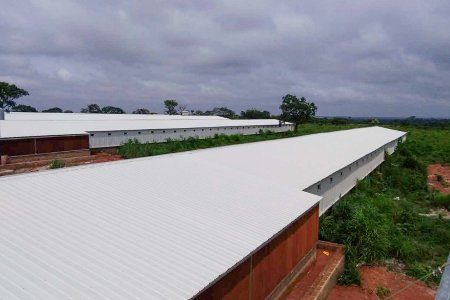 Chicken farm house and equpment(5 houses / 100*12*2.5 meter 2.0kg -- 25,000pcs)